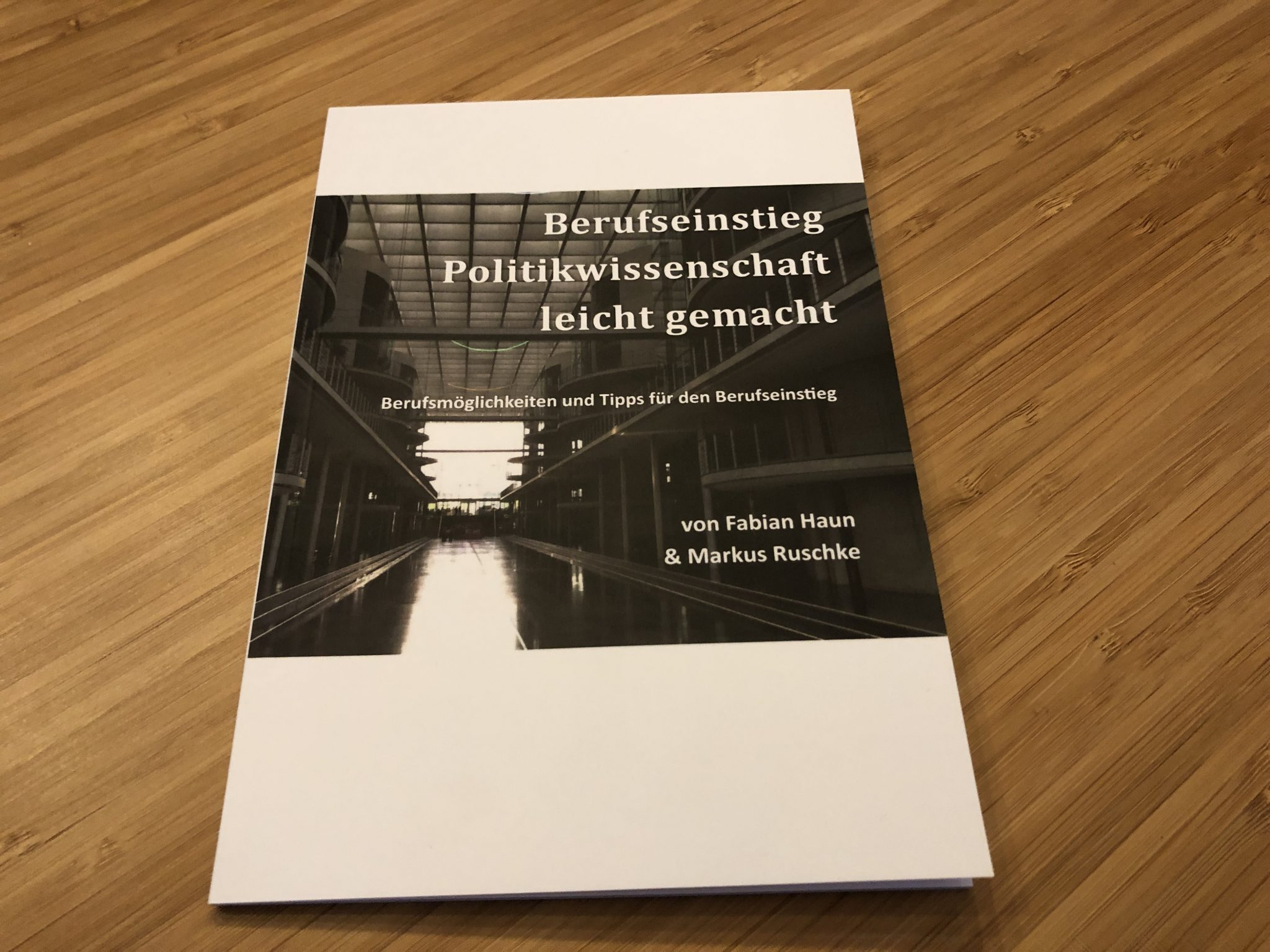 Praxishandbuch Berufseinstieg Politikwissenschaft Fabian Haun